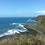 The Antrim Coast - view from the cliffs at Giant's Causeway.