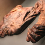 These are what the bog bodies look like (Ireland).