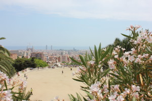 The views from Parc Guell were amazing.